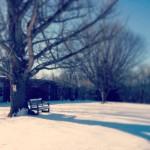 snow.bench.photo-58