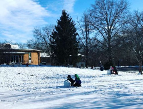 Lower School Snow Days