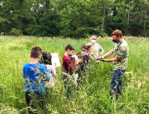 Hands-On Experiential Learning: Wetlands Field Day